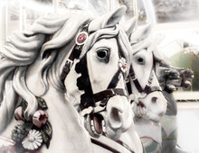 Close-up Of Carousel Horses