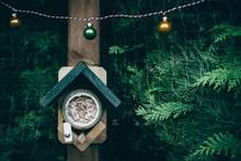Birdhouse During Christmas