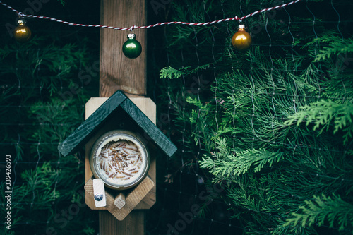 Fotografie, Obraz Birdhouse During Christmas