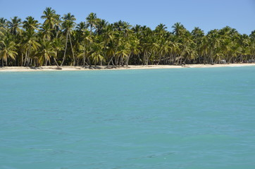 Rajska plaża - Saona, Dominikana