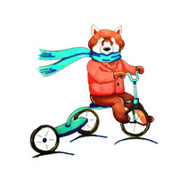 Red Panda Rides A Bicycle. Done By Tokens.