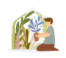 Male Gardener Working In Greenhouse With Seedlings And Plants. Hobby Man Holding Flowerpot Sitting On The Floor In Glasshouse Full Of Plants. Vector Illustration