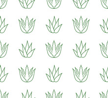 Aloe Vera Background, Agave Pl...