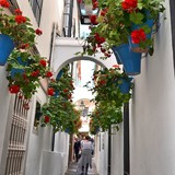 People In Narrow Alley With Flower Pots Mounted On Wall