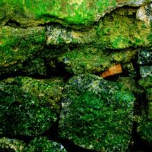 Full Frame Shot Of Moss Covered Rocks