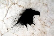 Black Eagle Head Silhouette Wi...