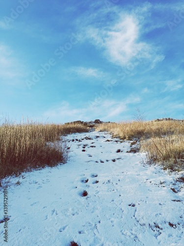 Photo Snow Covered Field By Dry Grass Against Sky At Arthur Seat
