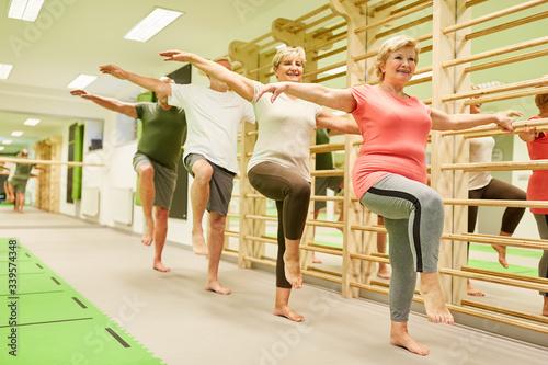 Cuadros en Lienzo Group of seniors doing balance exercise on one leg