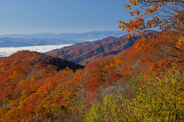 Fototapeta Góry Autumn landscape Great Smoky Mountains, Deep Creek Overlook, Great Smoky Mountains National Park, North Carolina, USA