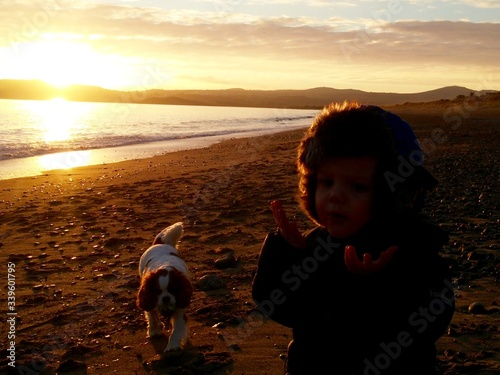 Canvas-taulu Boy Gesturing By Cavalier King Charles Spaniel At Beach During Sunset