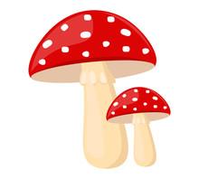 Hello Autumn, Red Mushroom Fla...