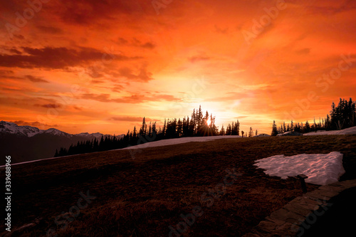 Silhouettes of mountains and trees against a golden orange sunset at Hurricane Ridge in Olympic National Park, Washington, USA.