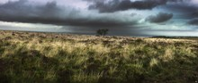 Panoramic View Of Grassy Field Against Cloudy Sky