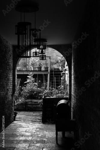 Tablou Canvas Plants Seen Through Archway