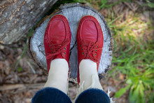 Vintage Red Shoes On Stump Of ...