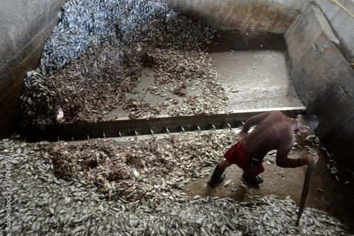 Fototapety, obrazy: High Angle View Of Men At Fishing Industry