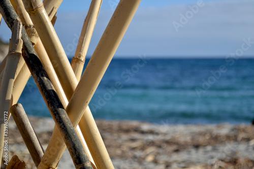 Fotografía Close-up Of Bamboos At Beach