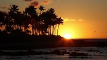 Beach Sunset Or Sunrise With T...