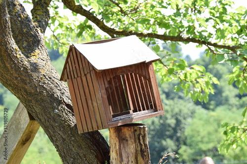 Fotografie, Obraz Wooden Birdhouse On Pole