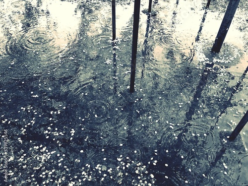Canvas Print High Angle View Of Puddle On Rainy Day