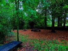 A Hidden Bench In The Middle O...