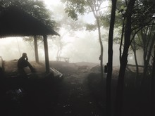 Silhouette Man Sitting In Gazebo Amidst Trees During Foggy Weather