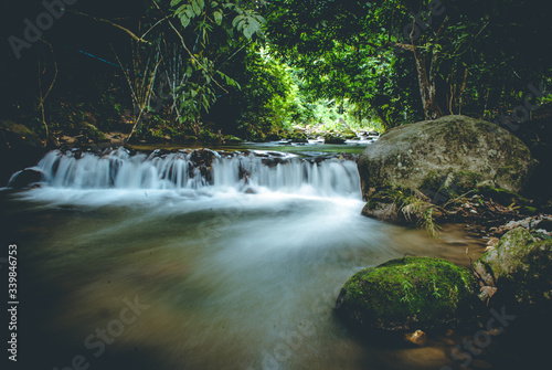 Fototapety, obrazy: mountain river in the forest