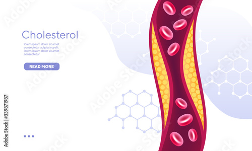 Organic compound red blood cell cholesterol vector illustration Wallpaper Mural