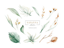 Set Watercolor Elements Of Sav...
