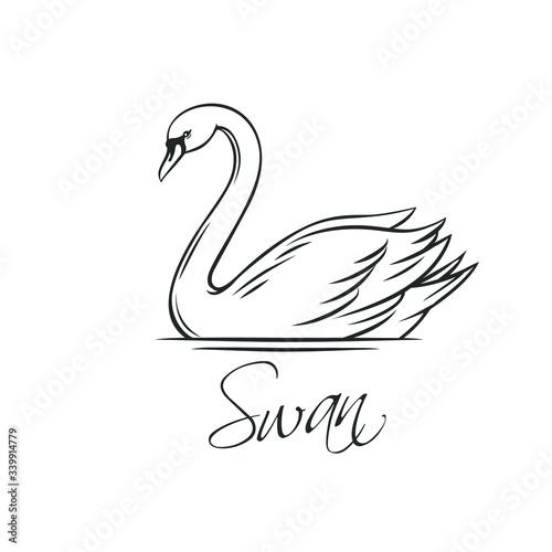 Tablou Canvas Swans outline icon.