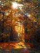 Trees On Field During Autumn Season