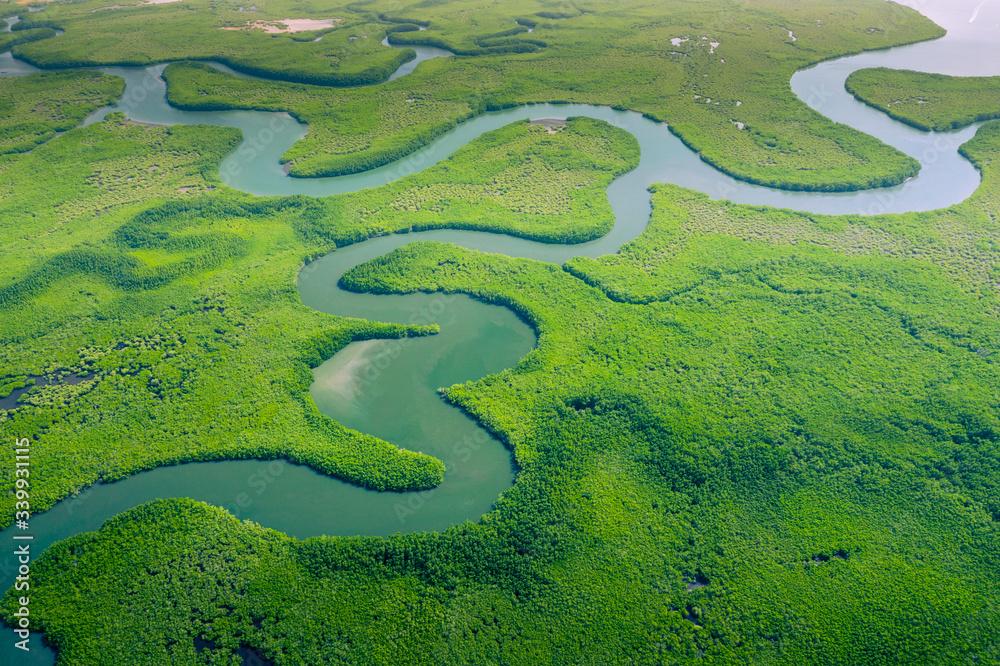 Fototapeta Aerial view of Amazon rainforest in Brazil, South America. Green forest. Bird's-eye view.