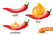 Natural Red Hot Chili Pepper Pod In Fire Flame With Mild, Medium And Hot Different Spicy Levels. Realistic Vector Illustration Of Mexican Jalapeno Isolated On White Background