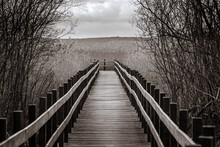 Wooden Footbridge Against Clou...