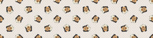 Hand Drawn Cute Rough Collie Dog Face Breed Seamless Border Pattern. Purebred Pedigree Domestic Dog Background. Dog Lover Fluffy Pet Washi Ribbon. Kennel Pooch EPS 10.