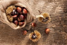 Edible Chestnuts In A Sack. Cr...