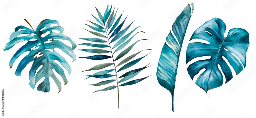 Fototapeta Tropical watercolor set with tropical leaves