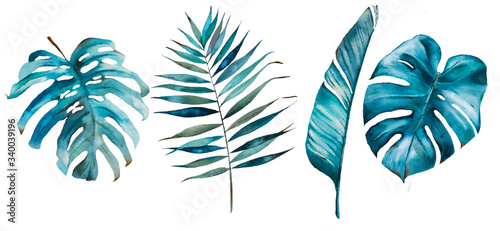 Tropical watercolor set with tropical leaves