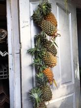 Pineapples Hanging On Door