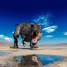Tyrannosaurus Rex Is Drinking ...