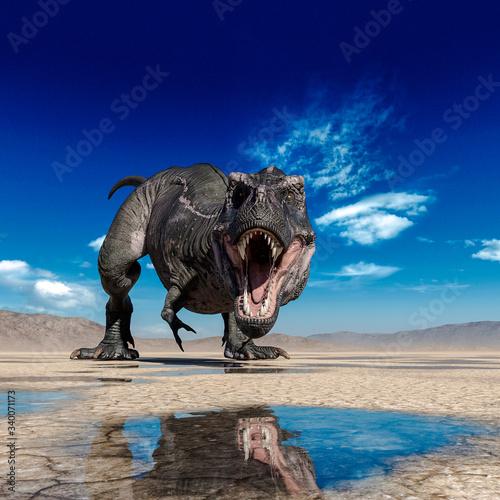 Fotografie, Obraz tyrannosaurus rex is drinking water on desert