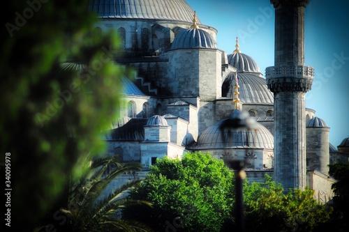Valokuvatapetti Trees Growing Against Hagia Sophia