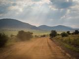 Fototapeta Sawanna - Masai Mara