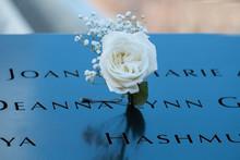 New York 911 Memorial White Rose
