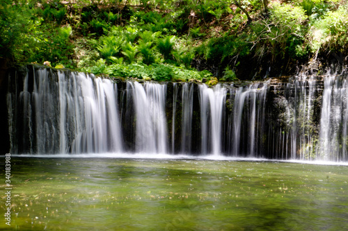 Fototapety, obrazy: Scenic View Of Waterfall In Japan