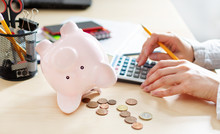 Women Counting Coins On Calculator Taking From The Piggy Bank. Use Last Savings, Unemployment And Bankruptcy Concept.