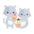 cute little cats with ice cream and cupcake kawaii cartoon character