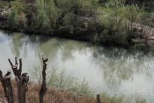 Benevento - Oca Del Nilo Nel Fiume