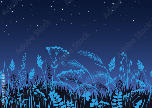 Seamless Border with Wild Plants in Moonlight