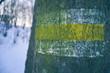 Znak szlaku turystycznego. Zniszczony, zdegradowany znak szlaku turystycznego.